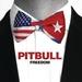 pitbull_3-2016.jpg