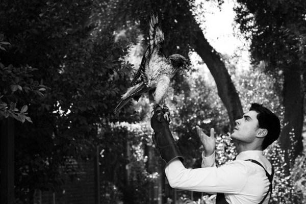 Zac Efron e gli animali. L'attore fra ricci, uccelli e volpi