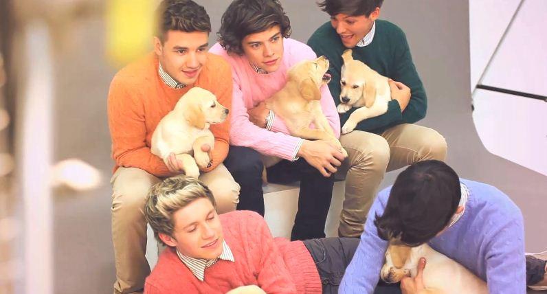Gli One Direction in versione bravi ragazzi per Wonderland
