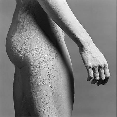 1981, Lisa Lyon, 1981