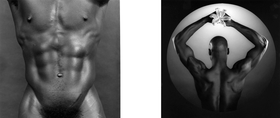 Charles-Bowman-/-Torso,-1980-American-Ken-Moody-(With-Orchid),1984