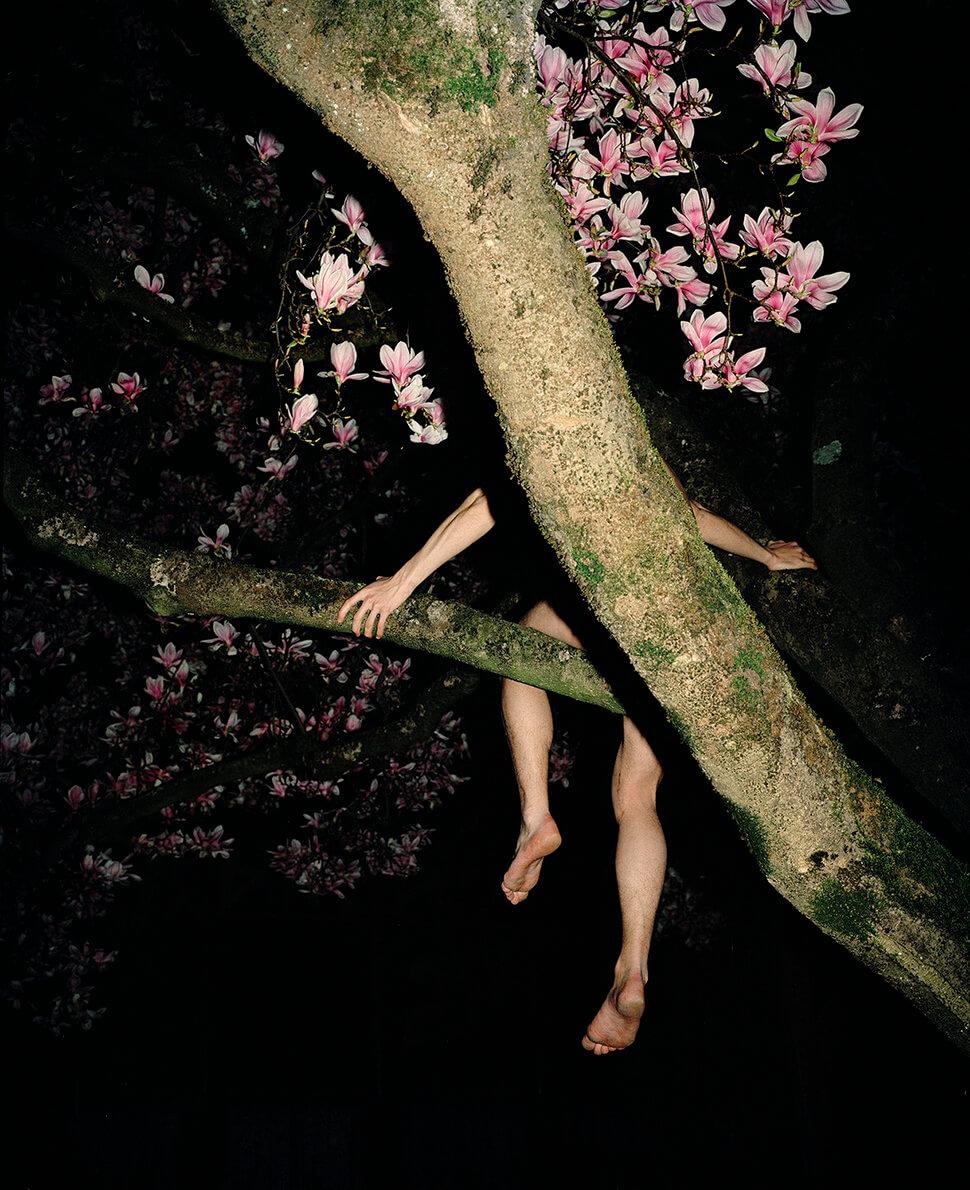 Ragazzi belli come ragazze: le fotografie di Haefeli sovvertono lo stereotipo