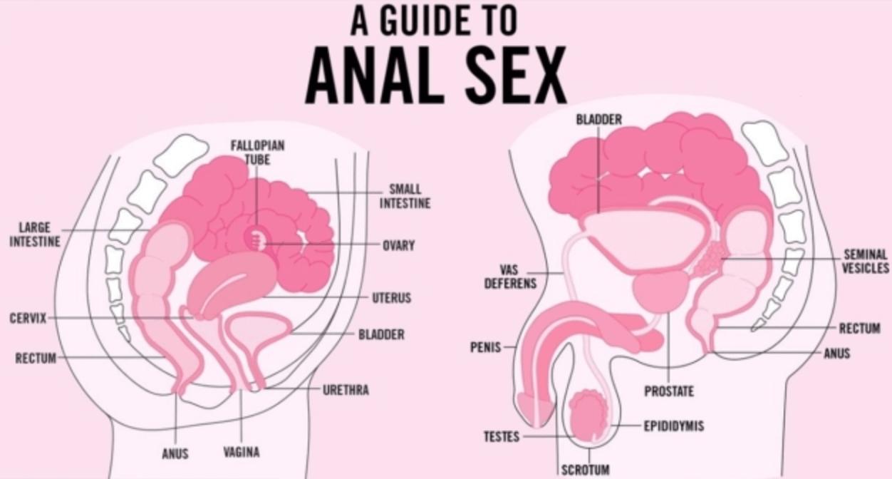 Capisco il suo punto il sesso anale e le mestruazioni sembrano cose.